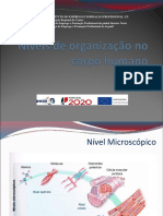 Organização Biológica Manual