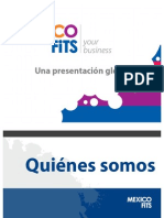 Mexico Fits - Presentacion Global 2009