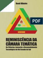RIBEIRO, Renê. Reminiscência da Câmara Temática de Ciências, Inovação e Desenvolvimento Tecnológico do Rio Grande do Sul