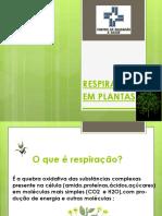 Respiração em Plantas.pptx