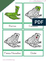 rana netodo montessory.pdf
