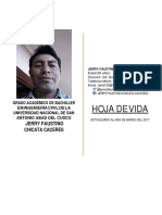 Curriculum Vitae Jerry Chicata