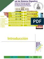 Digestivo_2012_FM.pptx