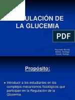 Reg. Glicemia 2012.ppt