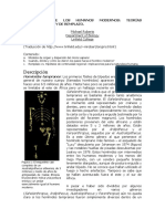 DIFERECIACION DE LOS HOMINIDEOS.pdf