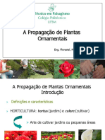 201470240-AULA1-INTRODUTORIA-ppt.pdf