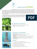 PDF Lettuce