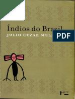 Índios do Brasil   Júlio Cesar Melatti.pdf