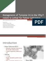 Mutagenesis of Tyrosine 24 in the VPg Protein