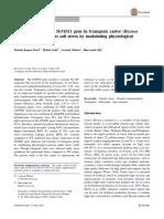 Expresión Ectópica Del Gen SbNHX1 de Higuerilla Transgénica