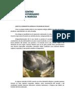 QUÉ ES LA DERMATITIS ALERGICA A PICADURA DE PULGA.pdf