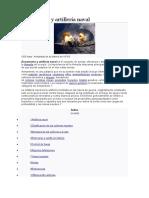 Armamento y Artillería Naval