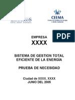 EJEMPLO de Informe Prueba Necesidad XXXX (1)