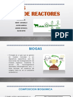 Biogas PRINCIPALES REACTORES
