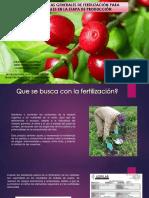 Alternativas Generales de Fertilización Para Cafetales en La