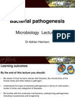 Lecture 4 Microbiology 2017