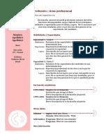 Curriculum Vitae Modelo3b Granate