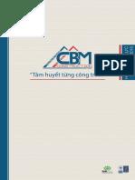 CBM Profile VN
