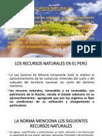Recursos Naturales Xp