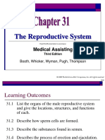 Chapter 31 the Reproductive System