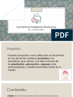 Lactancia Materna Power Point