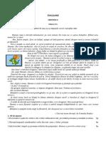 Evaluare Unitatea II Clasa a v a 20172018