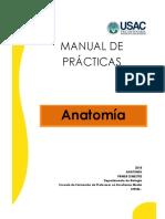 Práctica 1, Planos Anatómicos