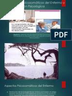 Clase 15 Aspectos Psicosomáticos Del Enfermo y Comprensión Psicológica 1