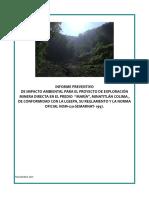 Ejemplo Informe Impacto ambiental