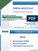 15_dedini_31.pdf