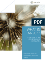 What-is-an-API-1.0.pdf