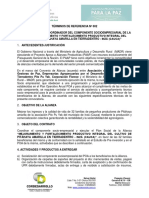 2. TR Socioempresarial - Pitahaya