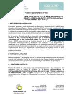 3. TR Proveedor Servicio Análisis de s. - Pitahaya