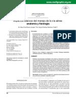 RAE CBM-BF Aspectos básicos del manejo de la vía aérea.pdf
