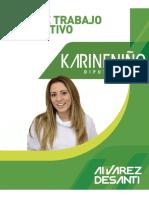 Plan de Trabajo Legislativo Karine Niño 2018-2022