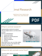 animal research  1