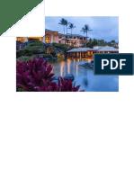 Grand Hyatt Kauai Resort & Spament - Google Docs