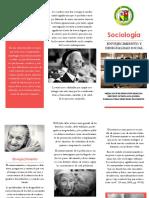 TRABAJO INTEGRADOR FINAL DE CICLO DE SOCIOLOGÍA