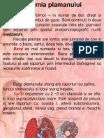 Anat+fiz. pulmon
