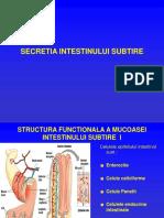 Absorbția intestinală
