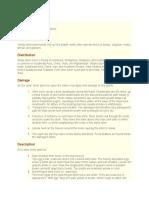 General Information to Stem Borer