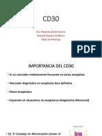 cd30.pdf