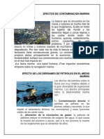 Efectos de Contaminacion Marina