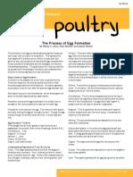 egg formartion.pdf