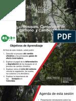 Modulo 1_ Bosques, Secuestro de Carbono y Cambio Climático