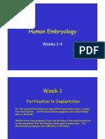 handouts1.pdf