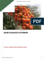 Arecanut Cultivation (Betel Nut) Information _ Agrifarming