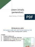 1. Sistem Perkemihan