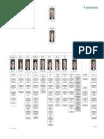 Cx Org Chart Eng