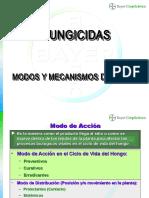 180345271 Modos y Mecanismos de Accion Fungicidas